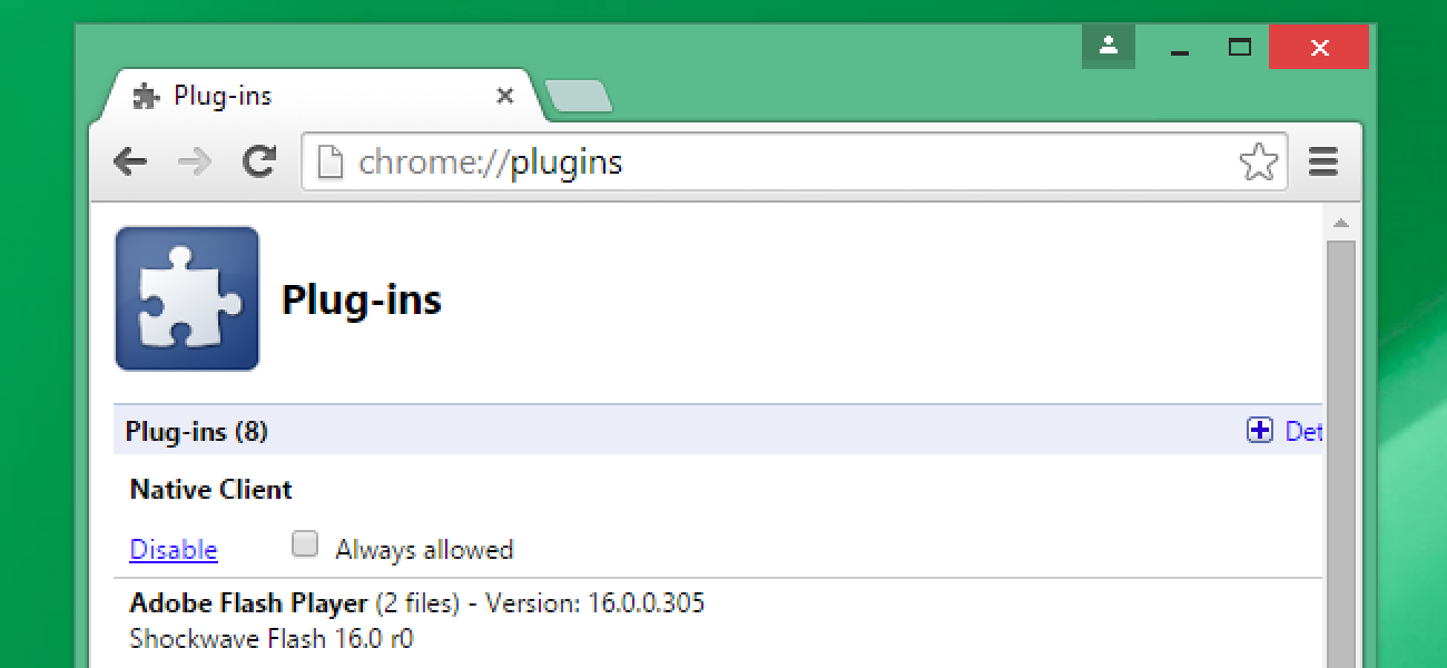 Google Chrome Includes 5 Browser Plug-ins, and Here's What