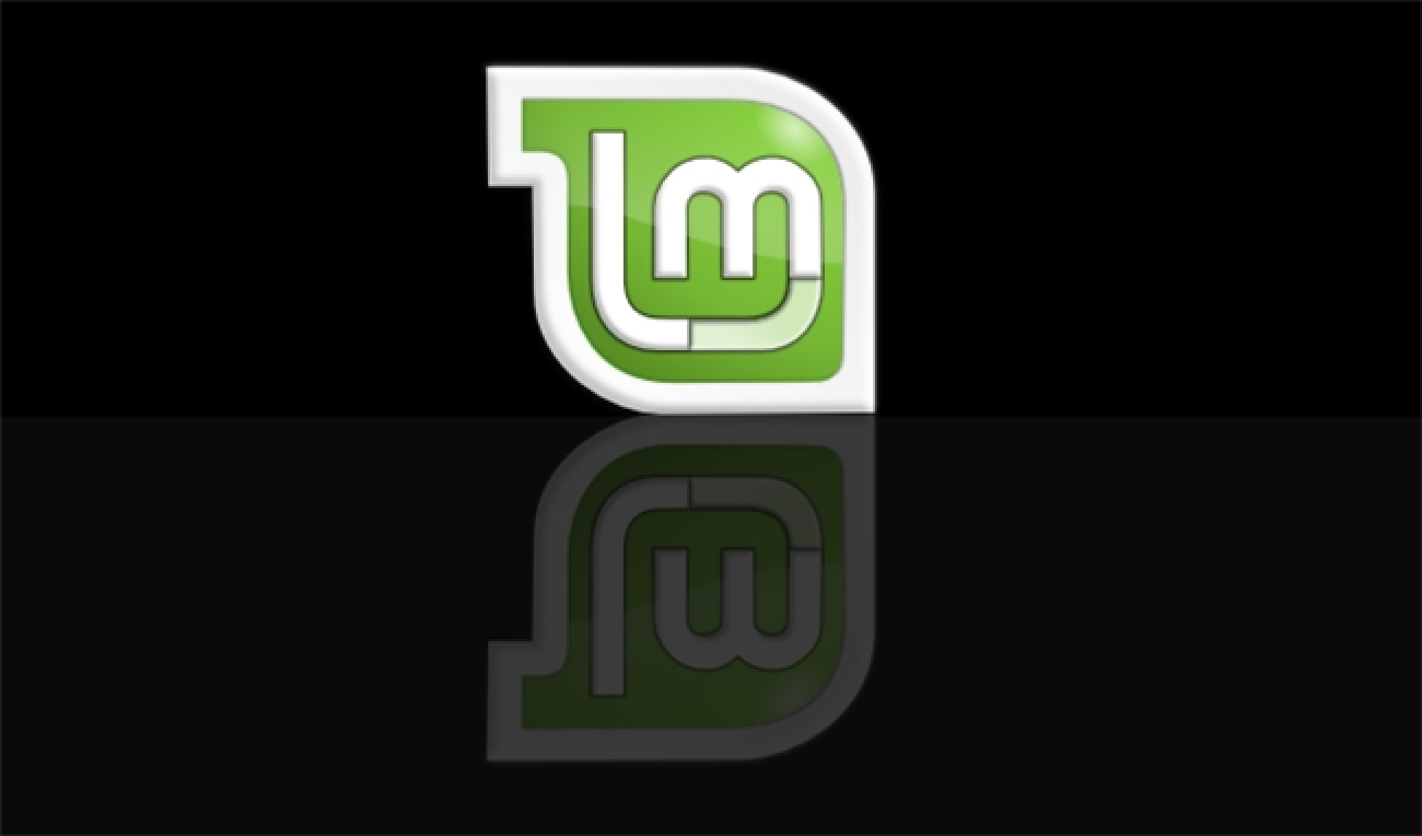install linux mint on second hard drive