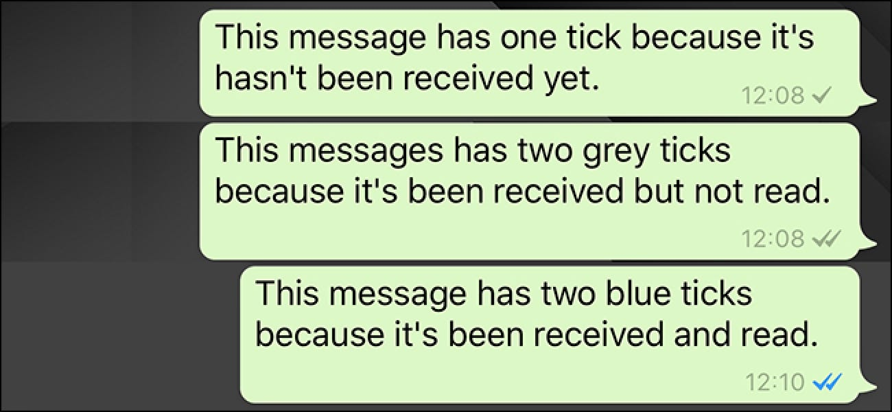 What Do the Little Checkmarks in WhatsApp Mean?