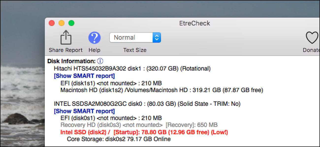 EtreCheck Runs 50 Diagnostics at Once to Determine What's Wrong with Your Mac