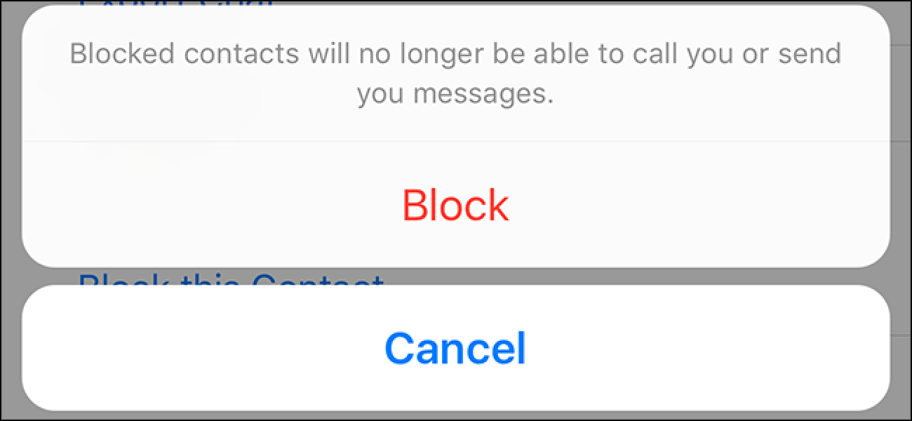 Block Number from WhatsApp Contact