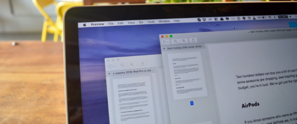 Two-PDFs-shown-side-to-side-on-a-Mac.png
