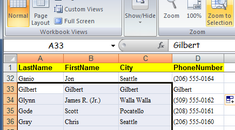 Magnify Selected Cells In Excel 2007
