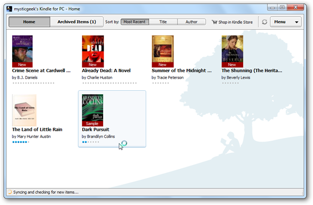 kindle e-book report extension
