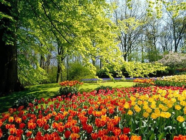 gardens-13