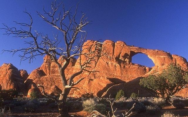 desert-areas-04