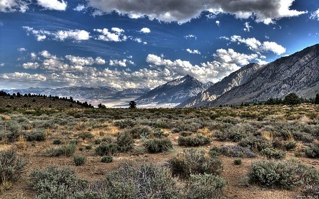 desert-areas-06
