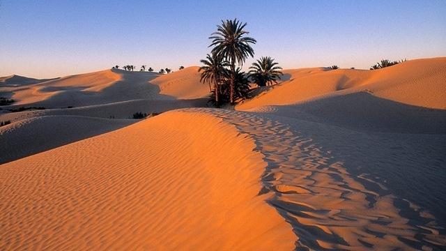 desert-areas-08