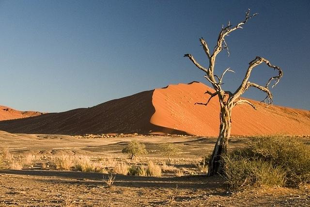 desert-areas-09
