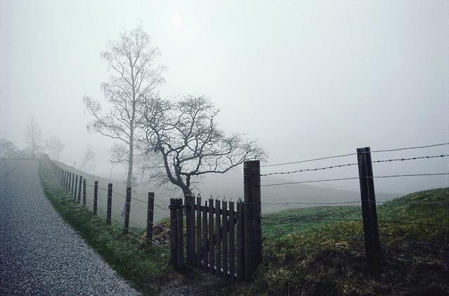 rural-scenes-03