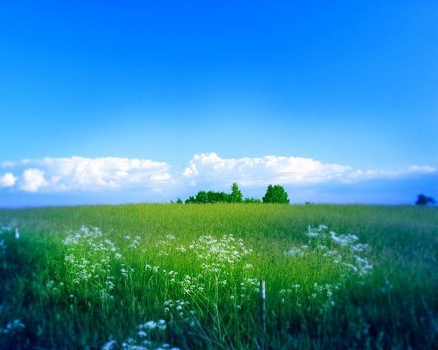 rural-scenes-11