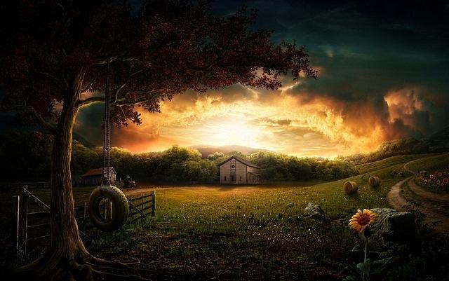 rural-scenes-15