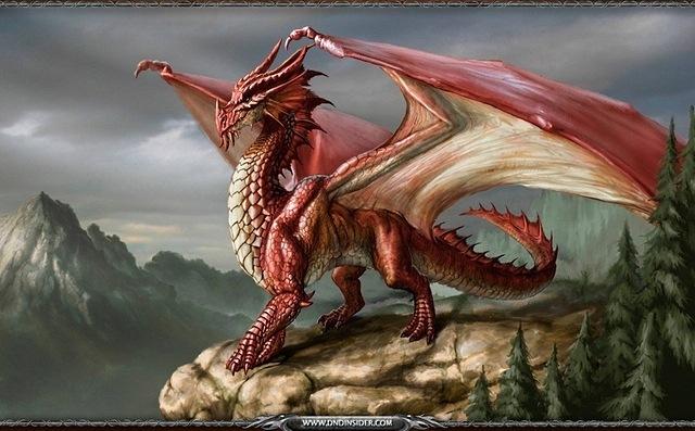 dragons-05