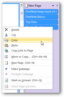 how to delete a notebook in onenote 2010