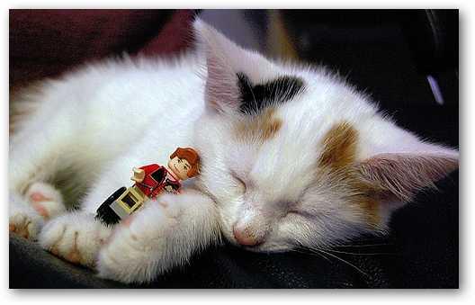 lego-kitty