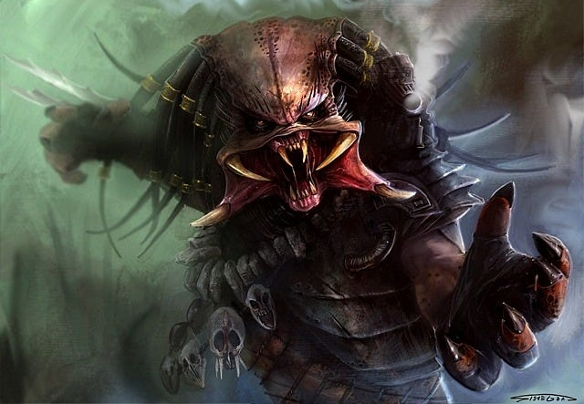 predator-03