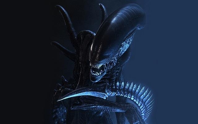 predator-11