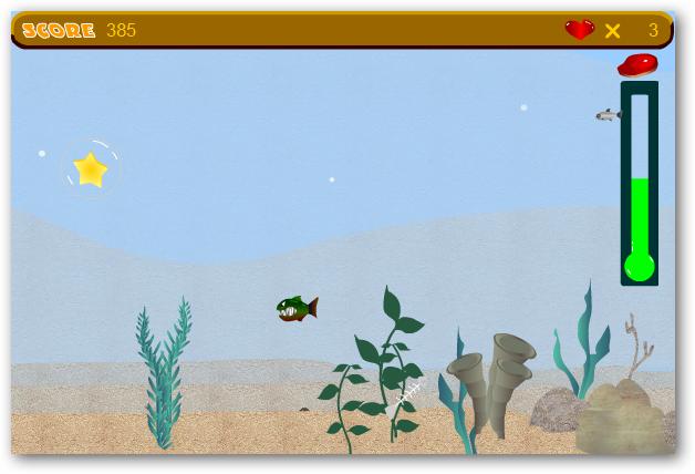 tiny-piranha-05