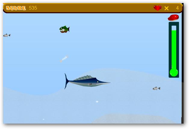 tiny-piranha-06