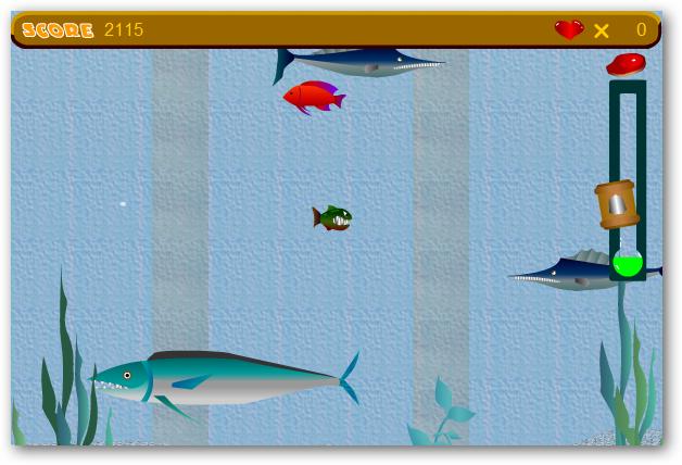 tiny-piranha-10