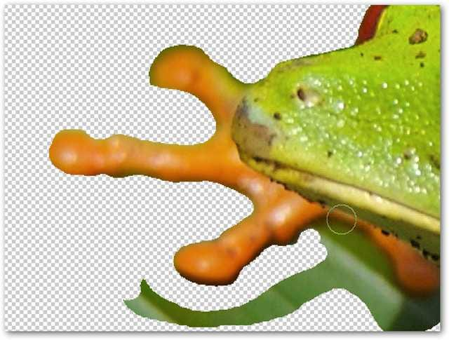 Remove Complex Backgrounds from Images in Photoshop
