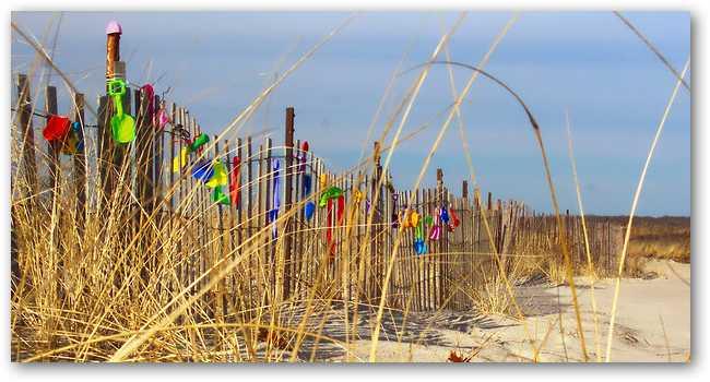 kids-dunes