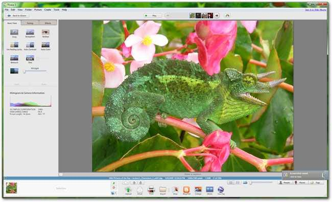 free  software edit foto picasa
