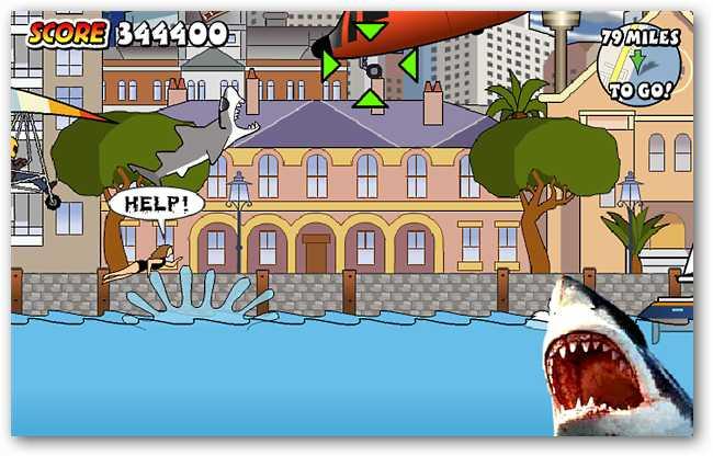 sydney-shark-07