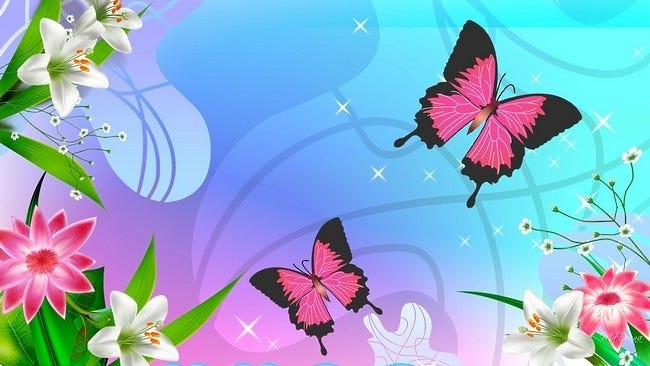 colourful-butterflies-14