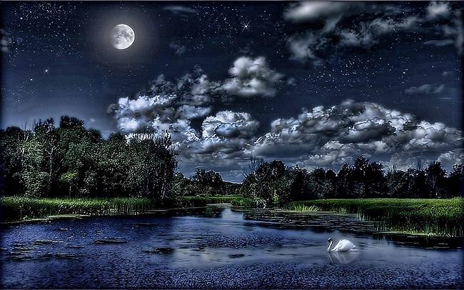 moonlit-nights-03