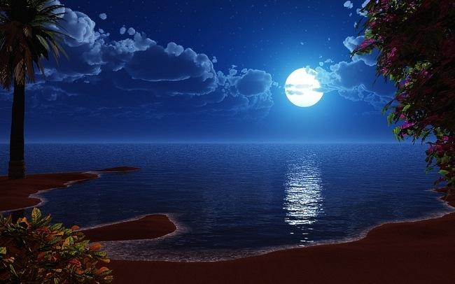 moonlit-nights-05