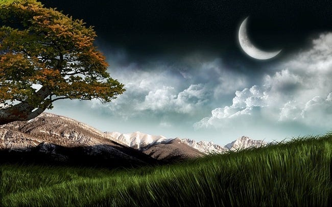 moonlit-nights-11
