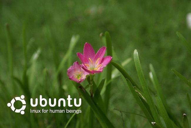 ubuntu-wallpaper-collection-series-2-05