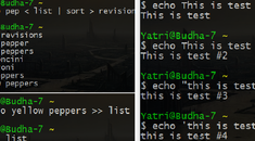 The Beginner's Guide to Shell Scripting 3: More Basic Commands & Chains