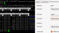 How Do Linux File Permissions Work?