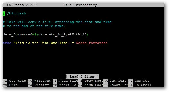 echo date script
