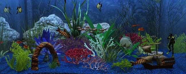 aquarium-customisation-set-00