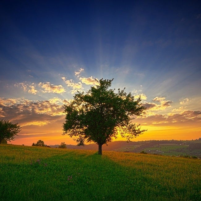 great-outdoors-wallpaper-collection-for-ipad-06