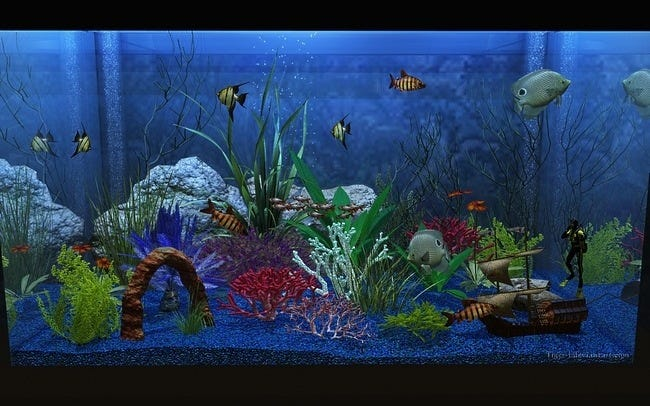 aquarium-customisation-set-04