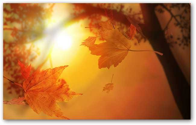autumn-desktop-customisation-set-10-b