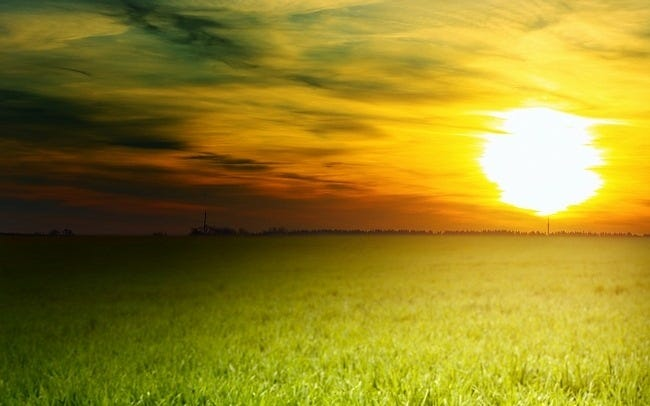 grasslands-wallpaper-collection-04