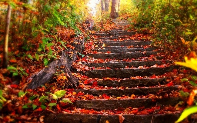 autumn-leaves-wallpaper-collection-06