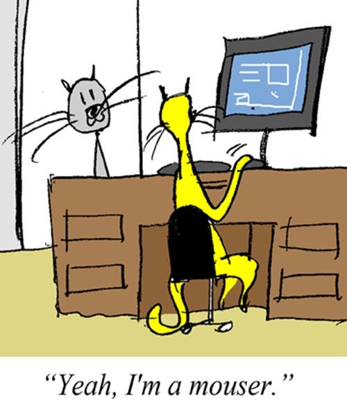 2011-10-13-(he-is-a-mouser)