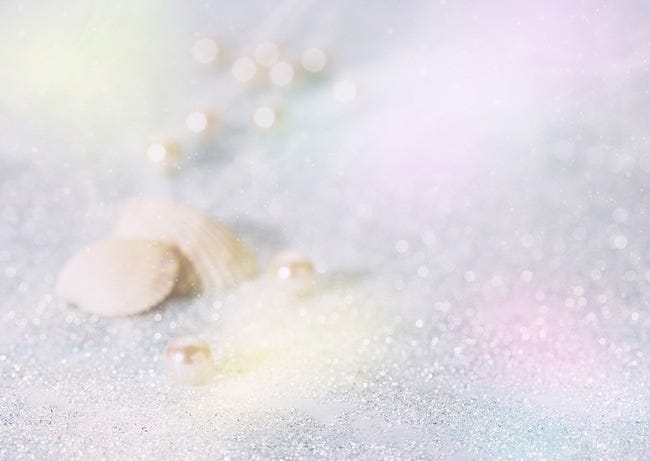 seashells-wallpaper-collection-10