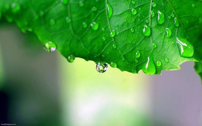 rainy-days-wallpaper-collection-series-two-08