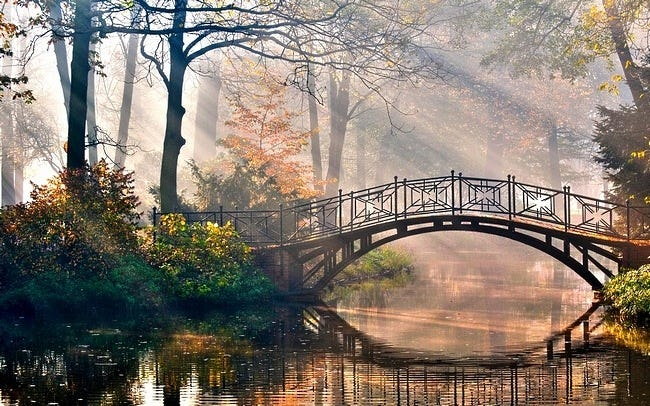 foggy-mornings-wallpaper-collection-06