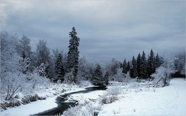 winter-2011-wallpaper-collection-08