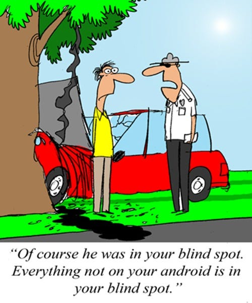 2012-01-03-(what-is-and-is-not-in-his-blind-spot)