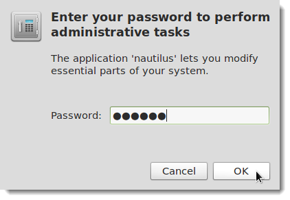 08_entering_password_to_authenticate