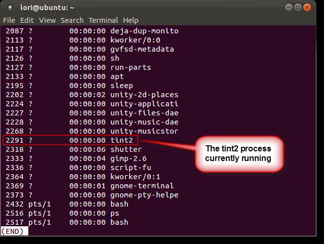 11_tint2_process_id